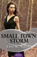 Small Town Storm cover.jpg